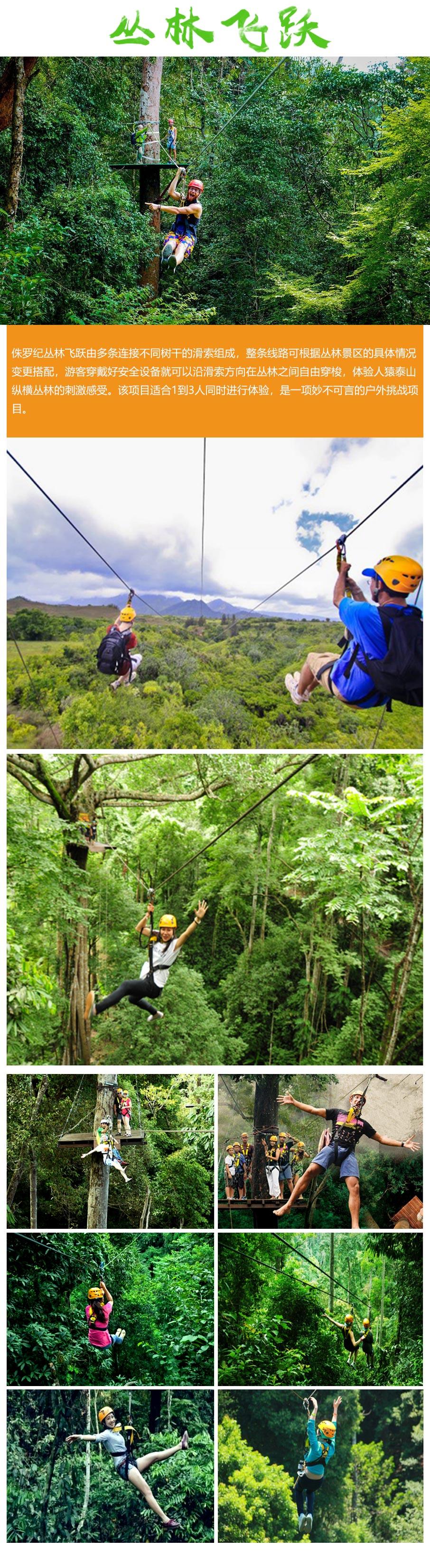 丛林飞越3