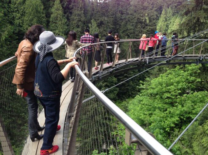 悬崖探险1