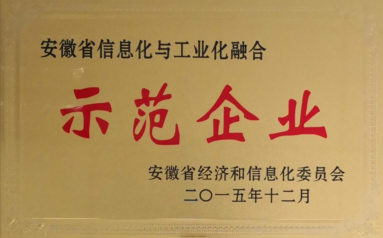 安徽省兩化融合示范企業