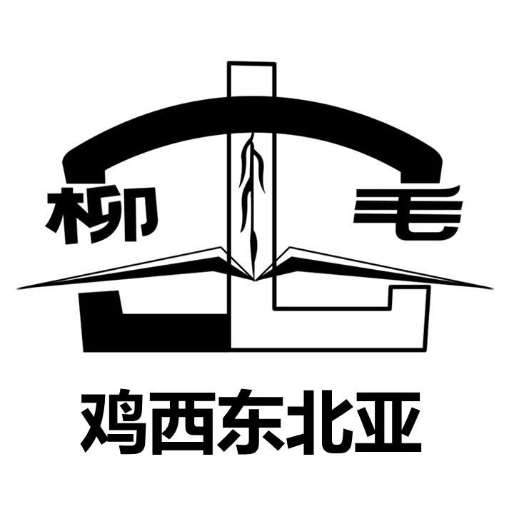 鸡西市东北亚矿产资源有限公司