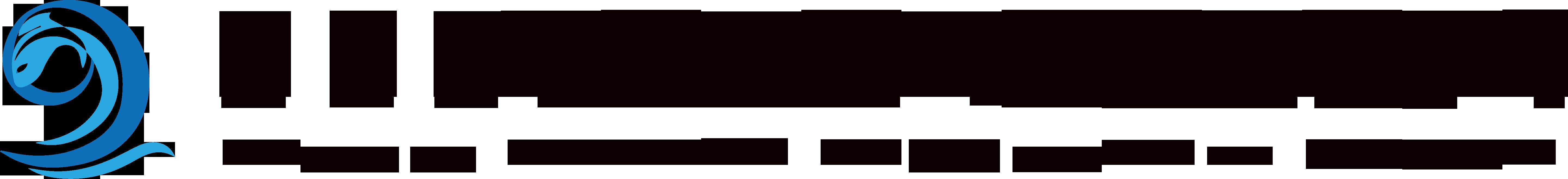 新思路logo