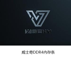 DDR4內存條