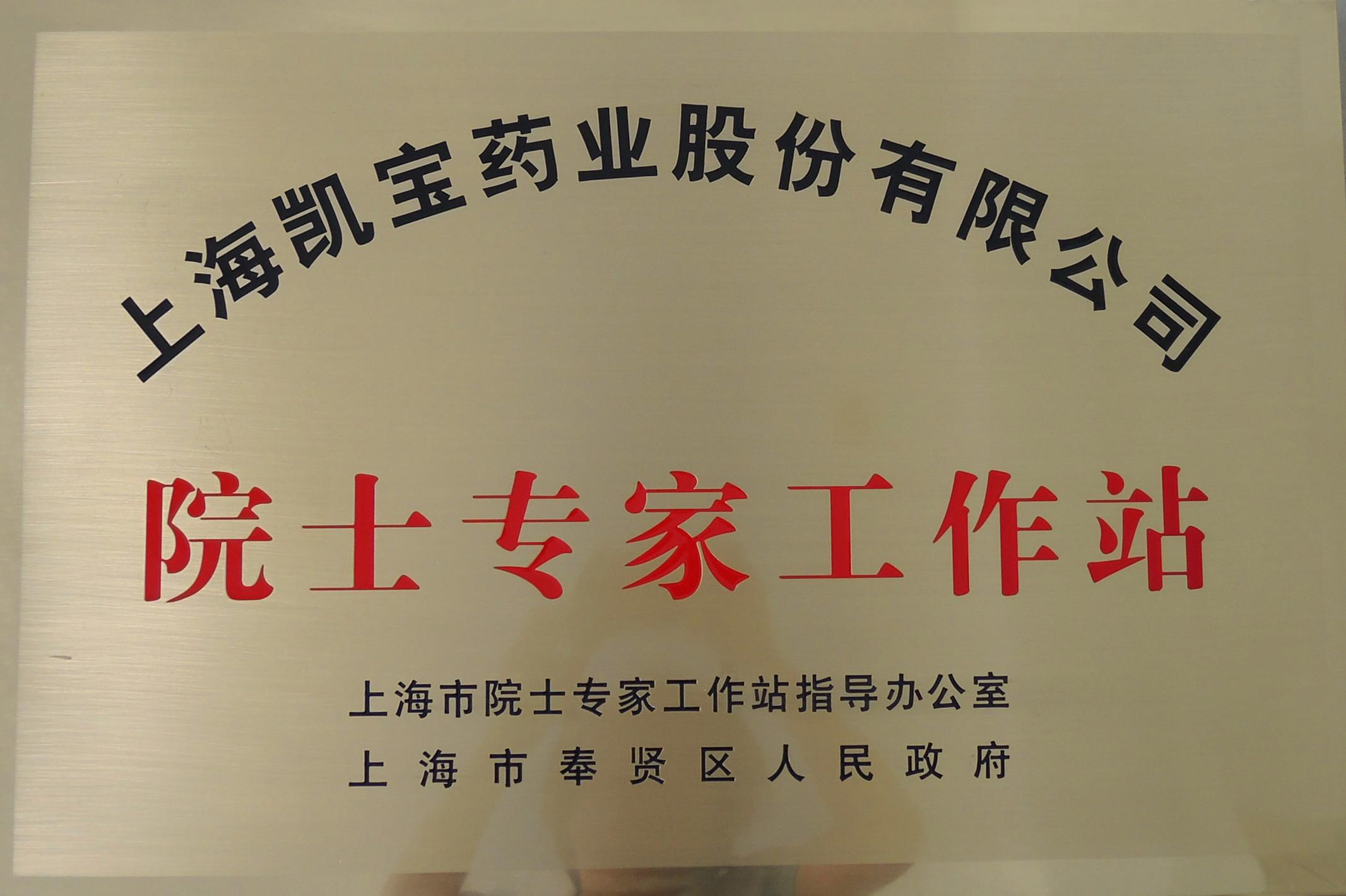 上海市院士专家工作站