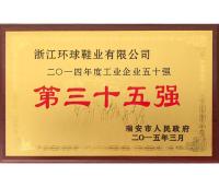 2015.3月獲得瑞安市工業企業第三十五強