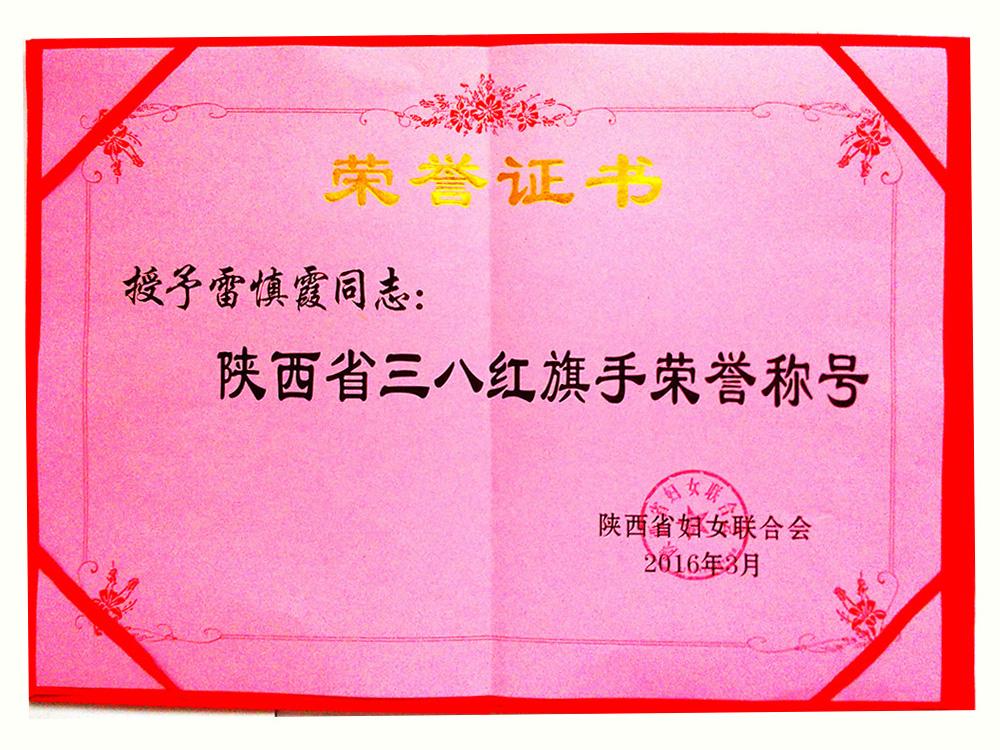 公司總經理陜西省三八紅旗手榮譽稱號