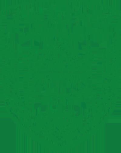 中国农业大学-
