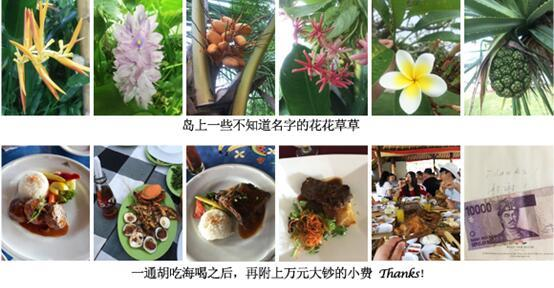 http://www.aoran.cn/UserFiles/Flowers%20and%20foods.jpg