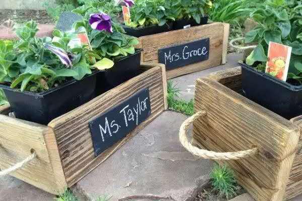 531家庭園藝