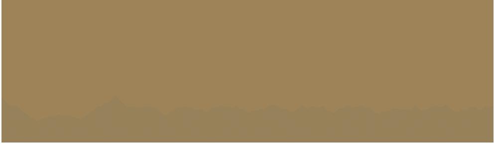 上海d88尊龙科技(集团)有限公司