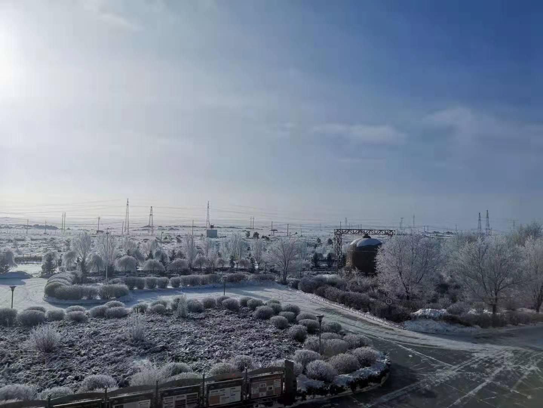 雪,像一團團鵝毛,使大路變的白而平