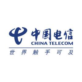 中國電信集團有限公司