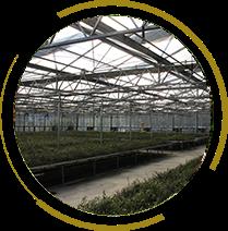 現代農業、有機農業、示範農業03
