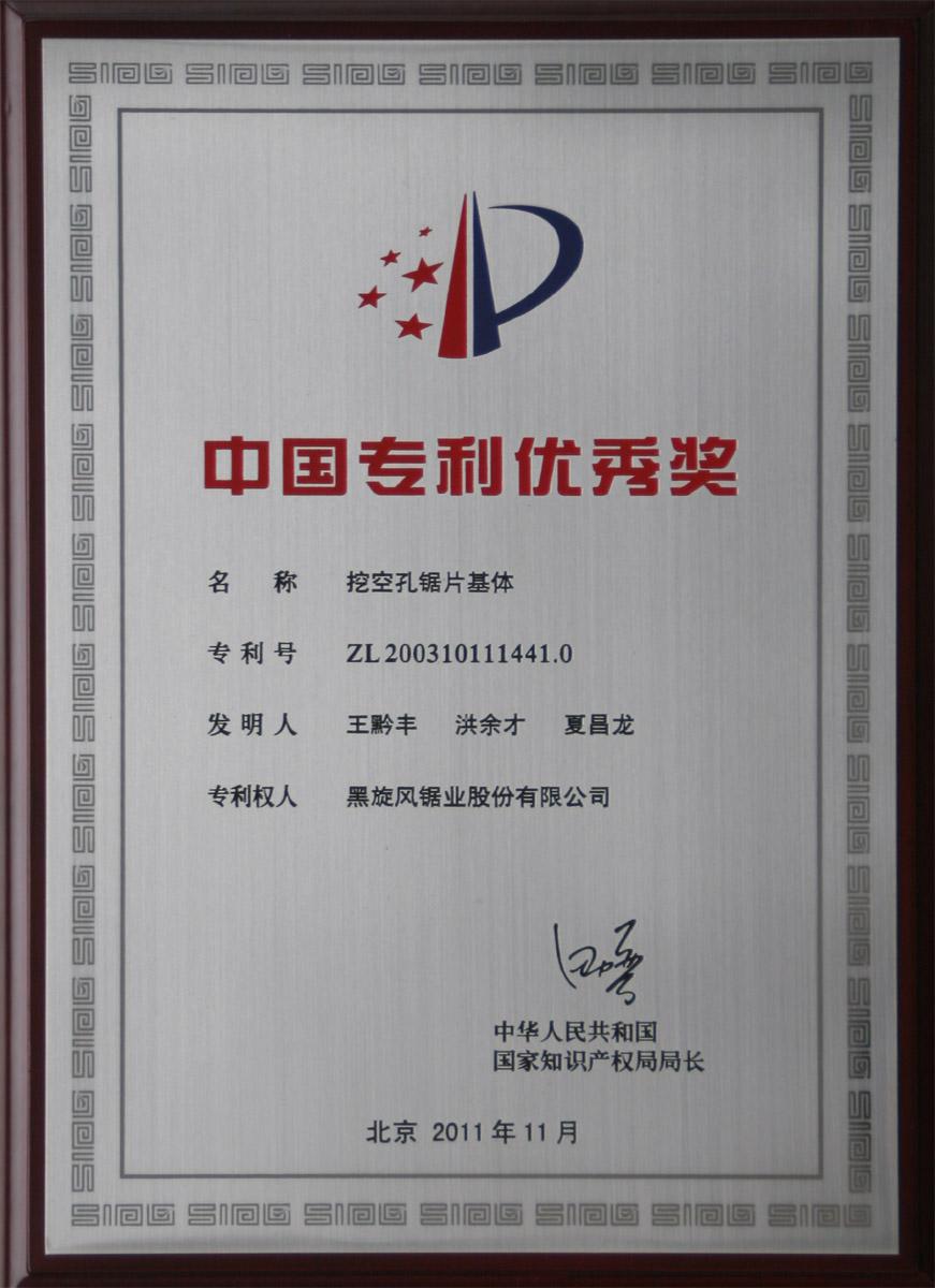5.2011中國專利優秀獎001