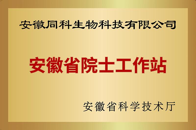 网站用铜牌