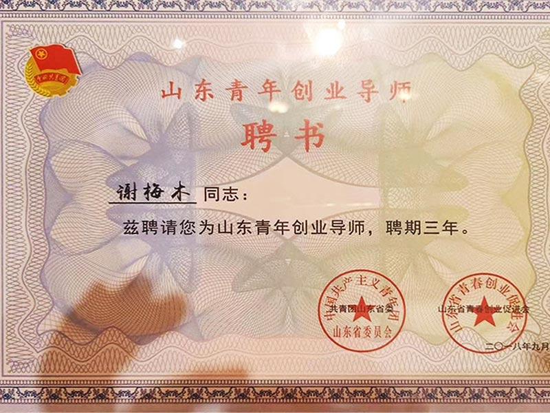 2018年9月7日山歌公司董事長謝梅木被評為山東省優秀青年創業導師證書
