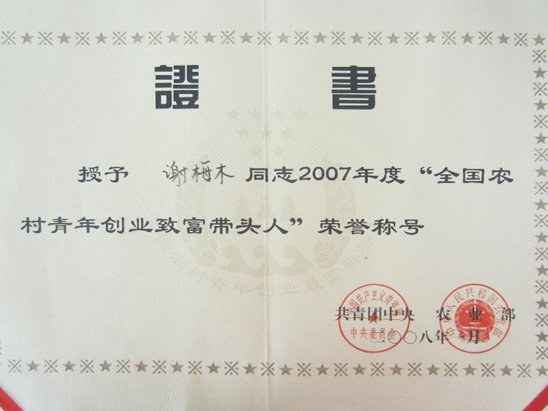 董事长谢梅木全国致富带头人荣誉证书