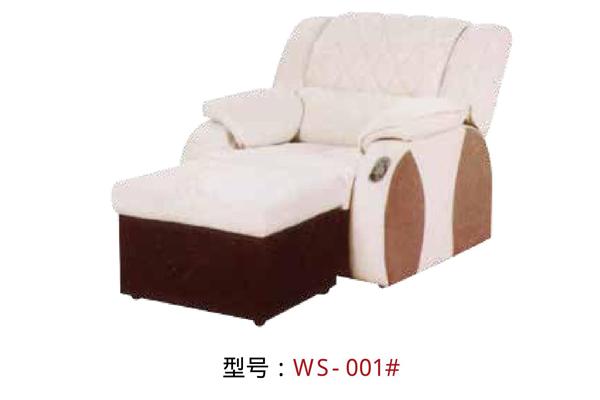 WS-001-