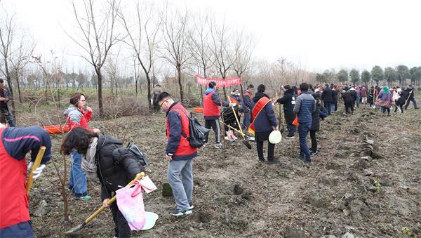 05组织家长参加亲子植树活动