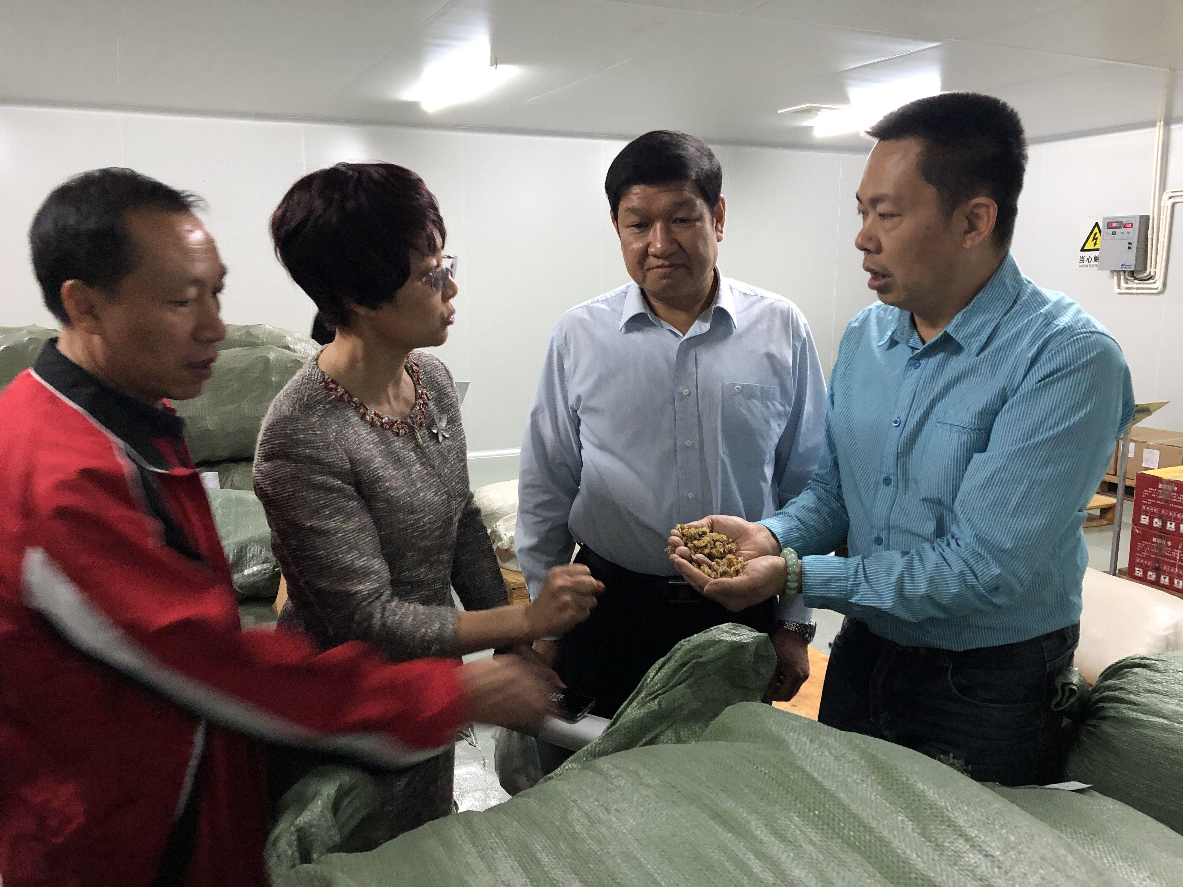 自治区政协领导开展民族贸易和民品企业发展调研5