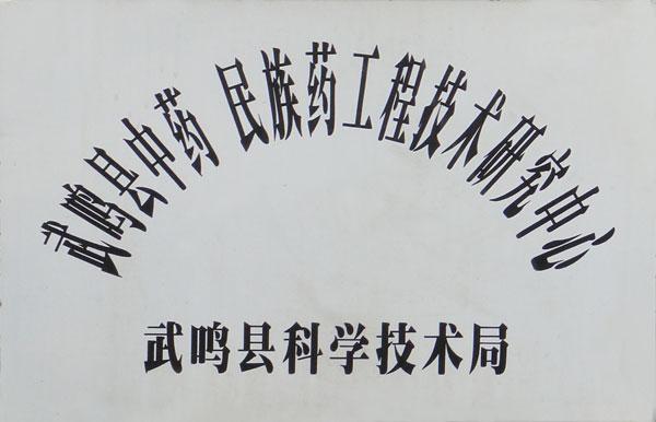 武鸣县中药民族药工程技术研究中心