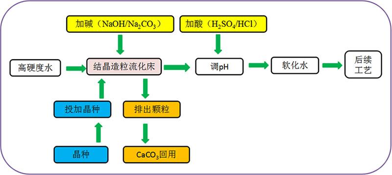 cp_b02