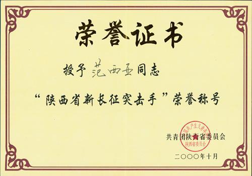 陜西省新長征突擊手
