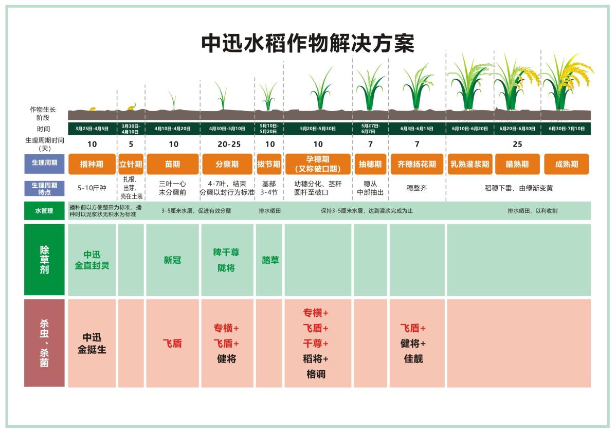 水稻作物解决方案