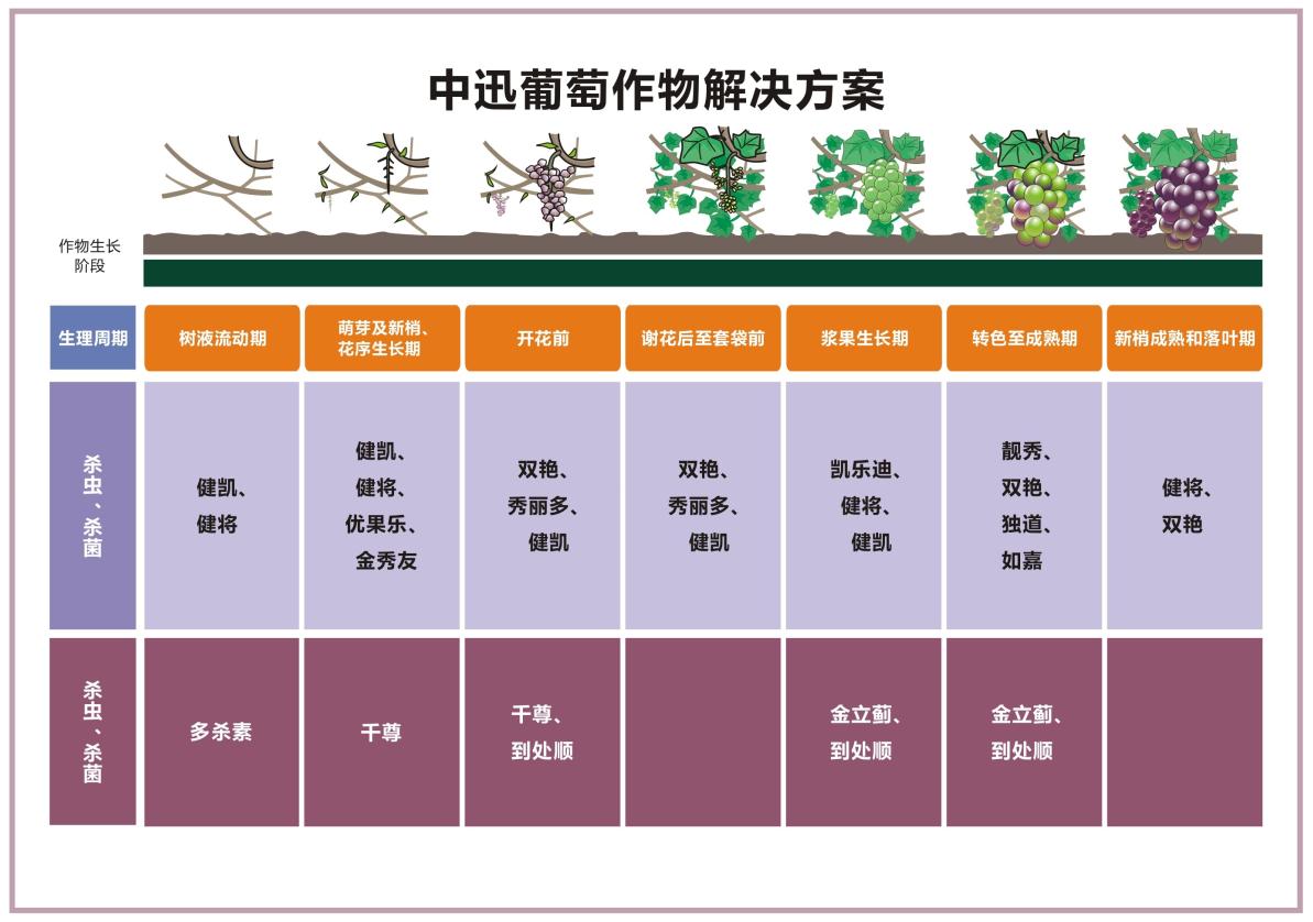 葡萄作物解决方案