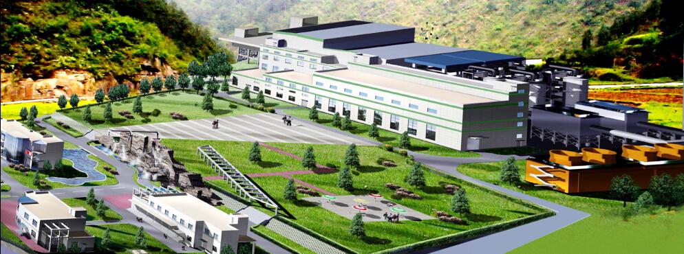 大安市生物質熱電聯產項目