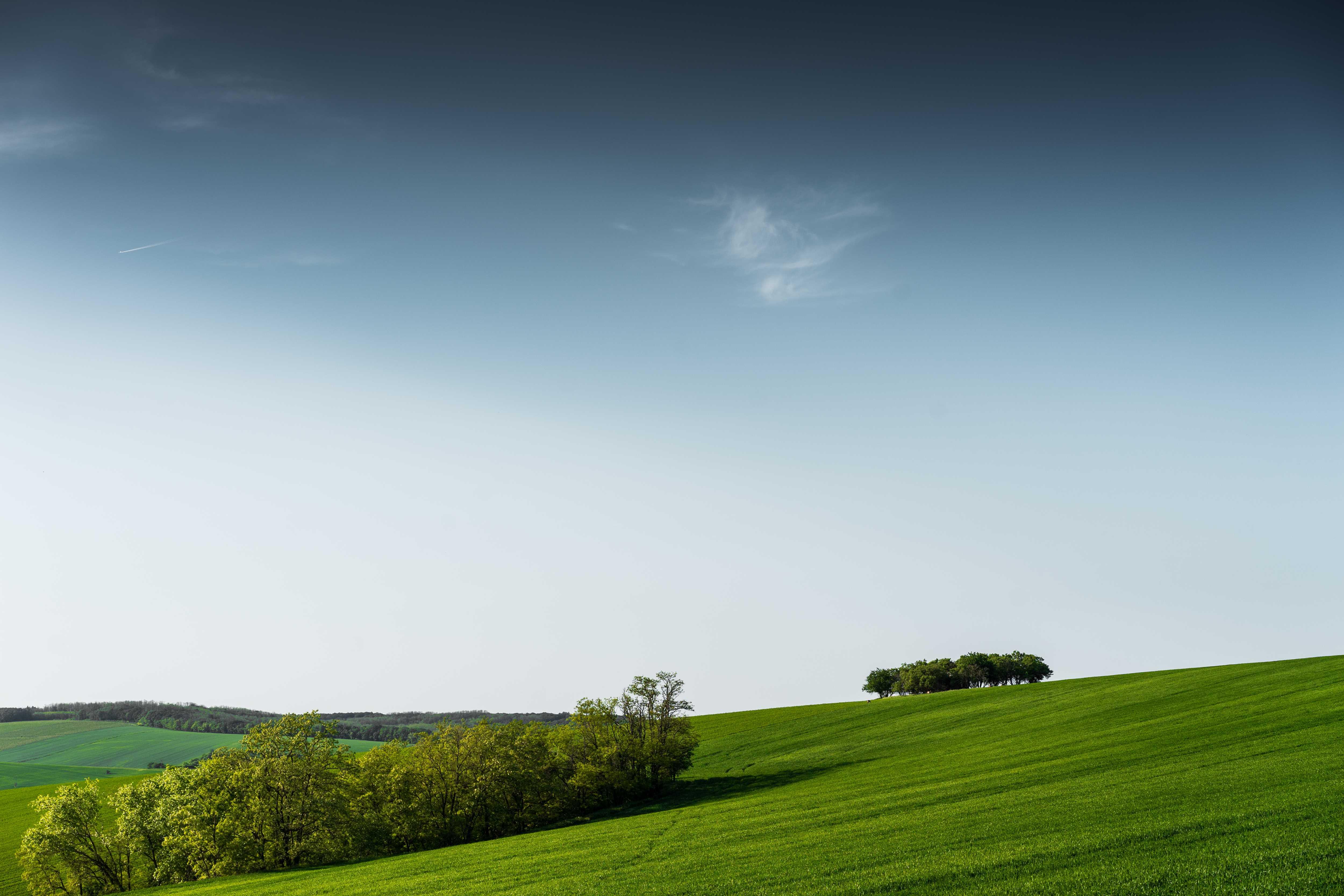 minimalistic-green-scenery-with-blue-sky-picjumbo-com