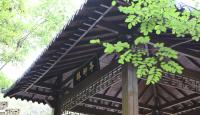 藏龍谷-QQ截圖20190916152223