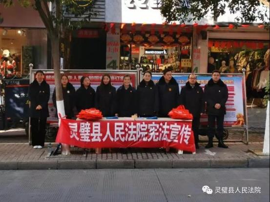 灵璧县法院开展12.4国家宪法日宣传活动