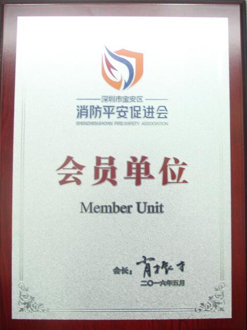 深圳市宝安区消防平安促进会会员单位