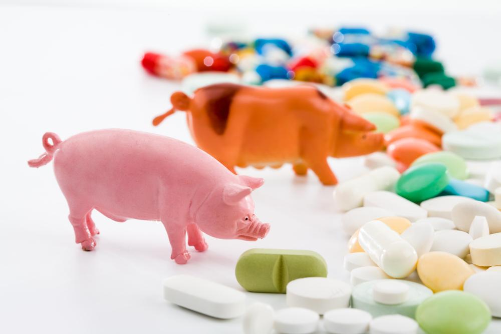 pigs-pills