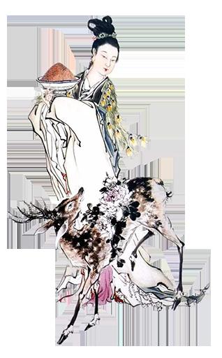 麻姑仙女1