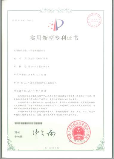 寧夏佰斯特證件-專利8