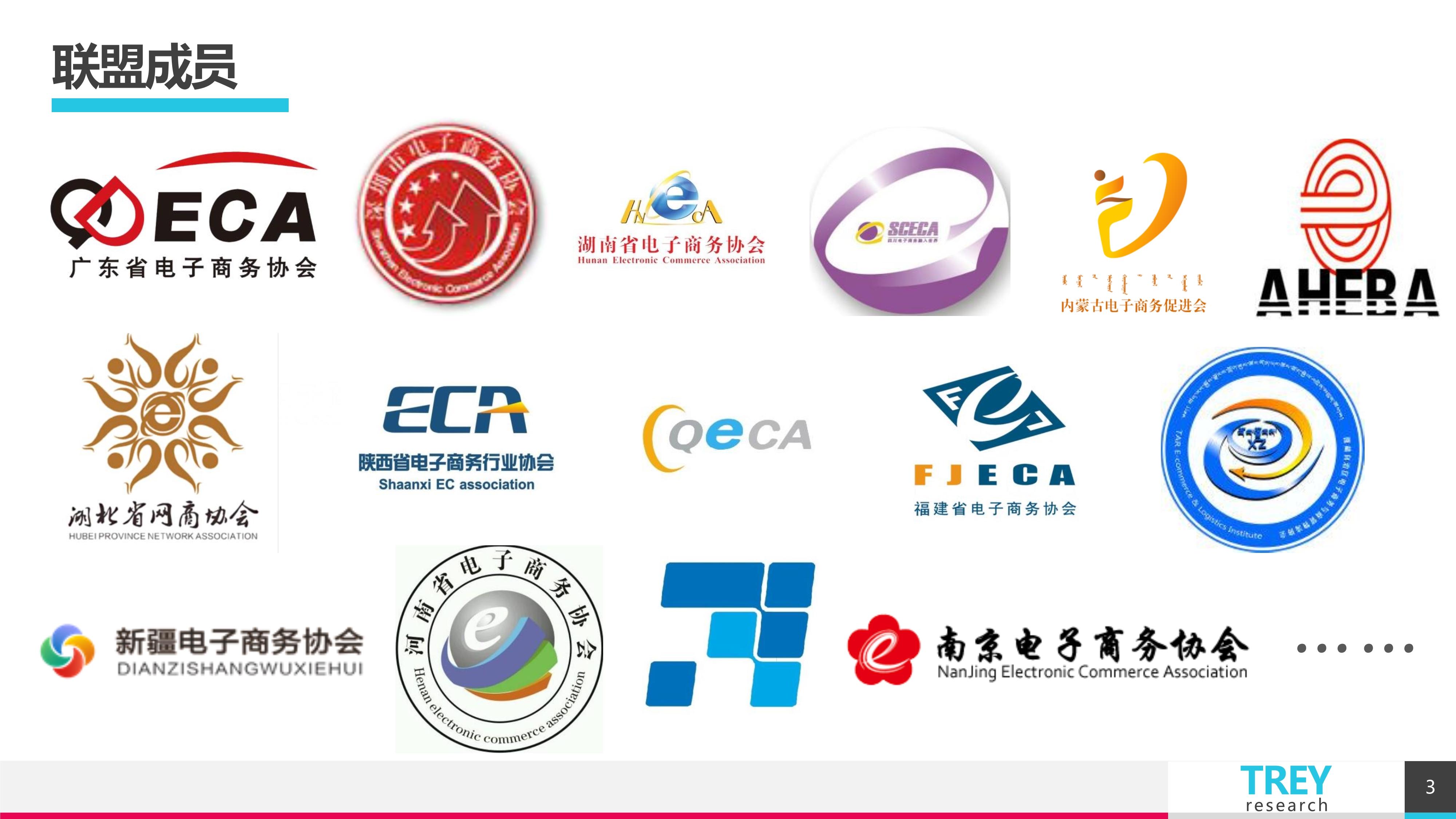3中国电子商务商协会联盟0220
