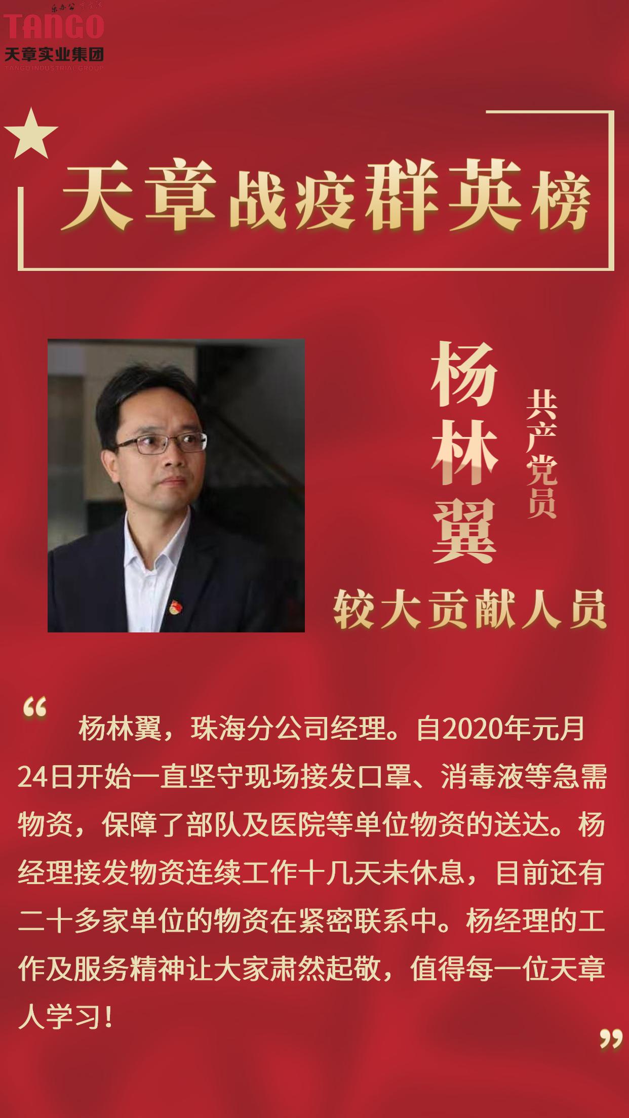 杨林翼海报