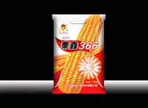 秦鑫366