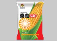秦鑫630