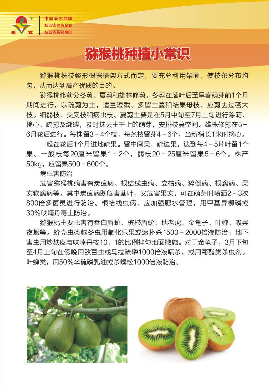 獼猴桃種植小常識