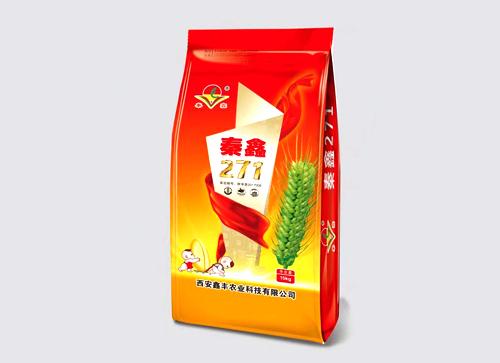 秦鑫271