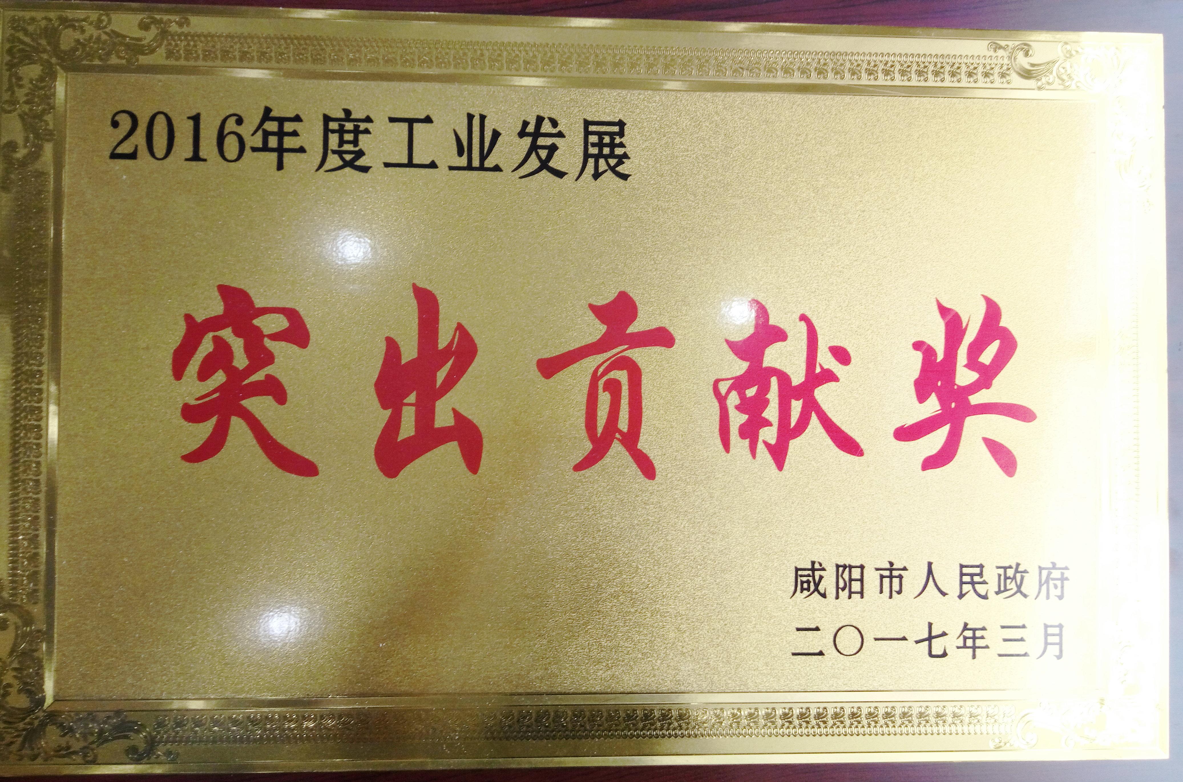 企業榮譽-突出貢獻獎