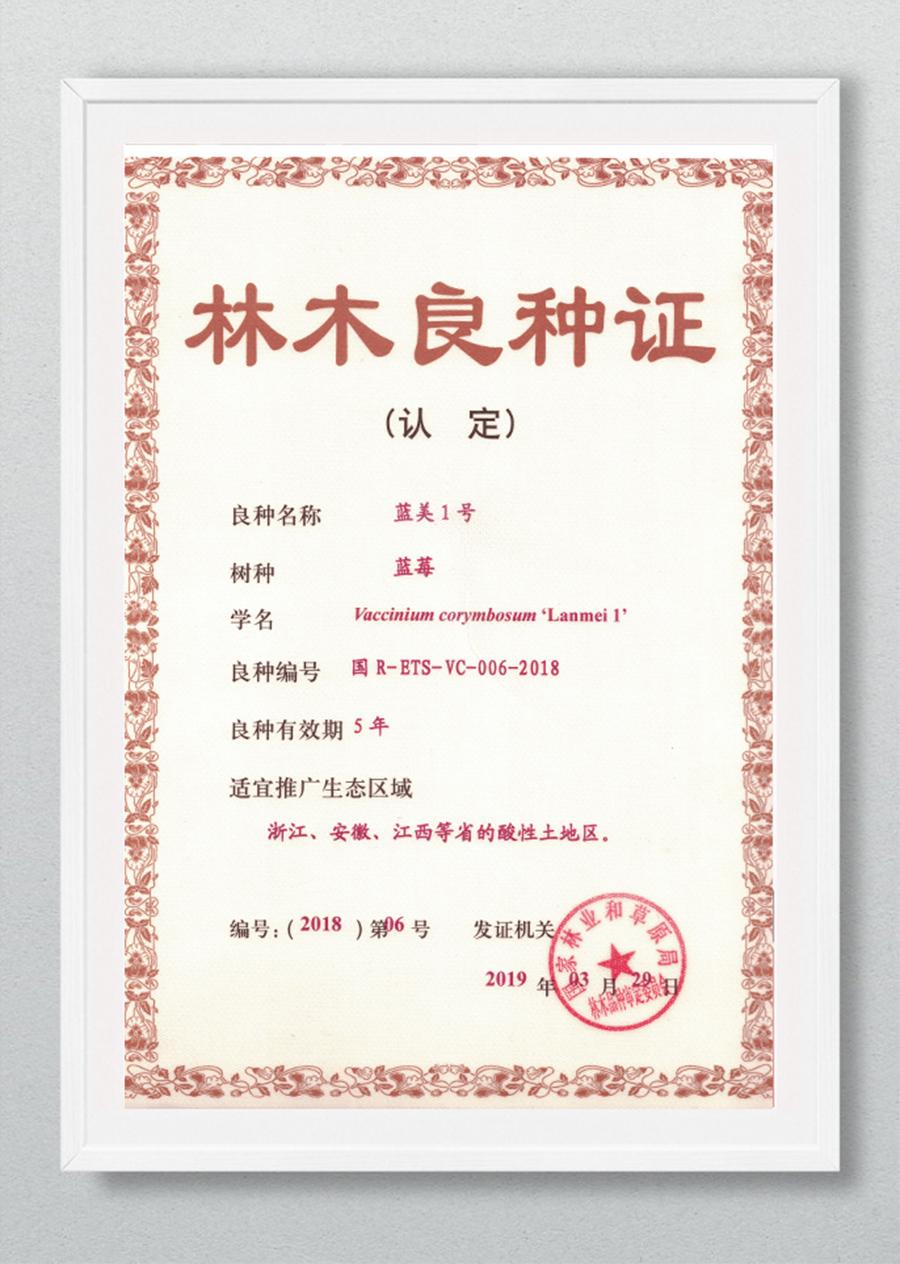 网站核心产品二级页面-苗木_09