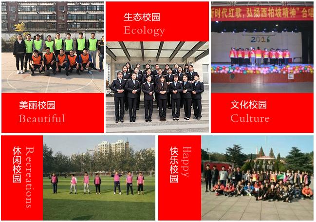 QQ圖片20191220161620