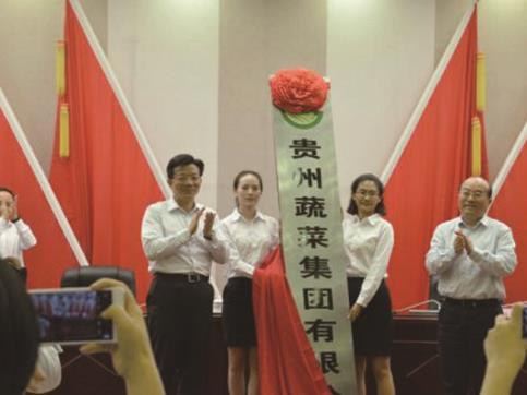 全省農村產業革命蔬菜產業發展推進會簽約儀式在貴陽舉行