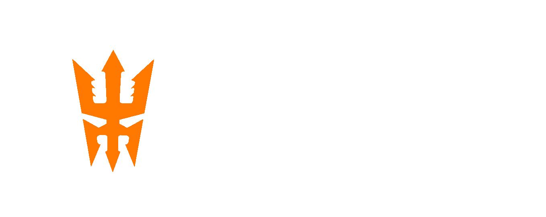 wallas_logo_oranssivalkoinen