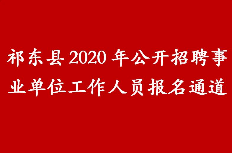 祁东县2020年公开招聘事业单位工作人员报名通道