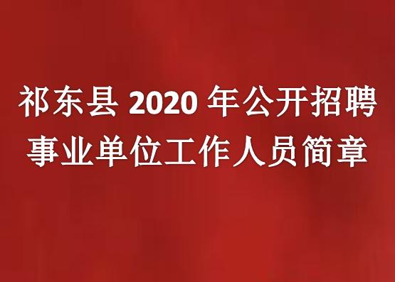 祁东县2020年公开招聘事业单位工作人员简章