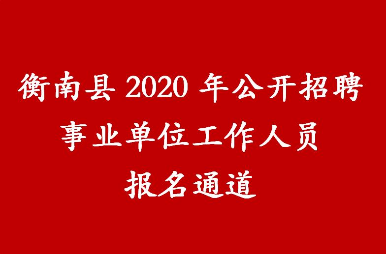 衡南县2020年公开招聘事业单位工作人员报名通道
